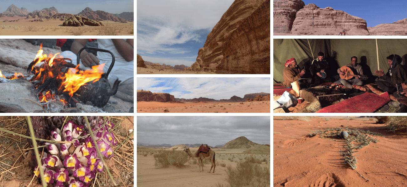 Voyage unique en Jordanie